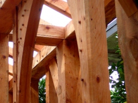 Cypress-framing-1