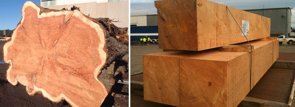 log-sawn-2