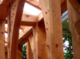 Cypress-framing-1