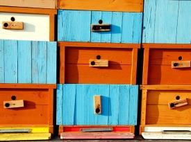 Brand new bee house