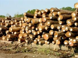 log-stacks